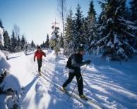 V zimě na běžkách